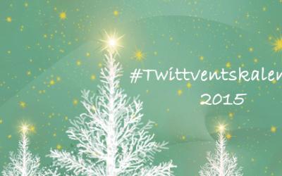 Twittventskalender 2015 medienspinnerei Falk Sieghard Gruner (Vorschau Blog)